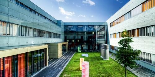 Startschuss für den Innovationscampus Potsdam-Golm